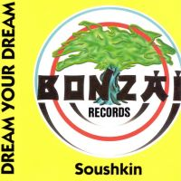Dream Your Dream - Soushkin