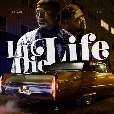 In die Life